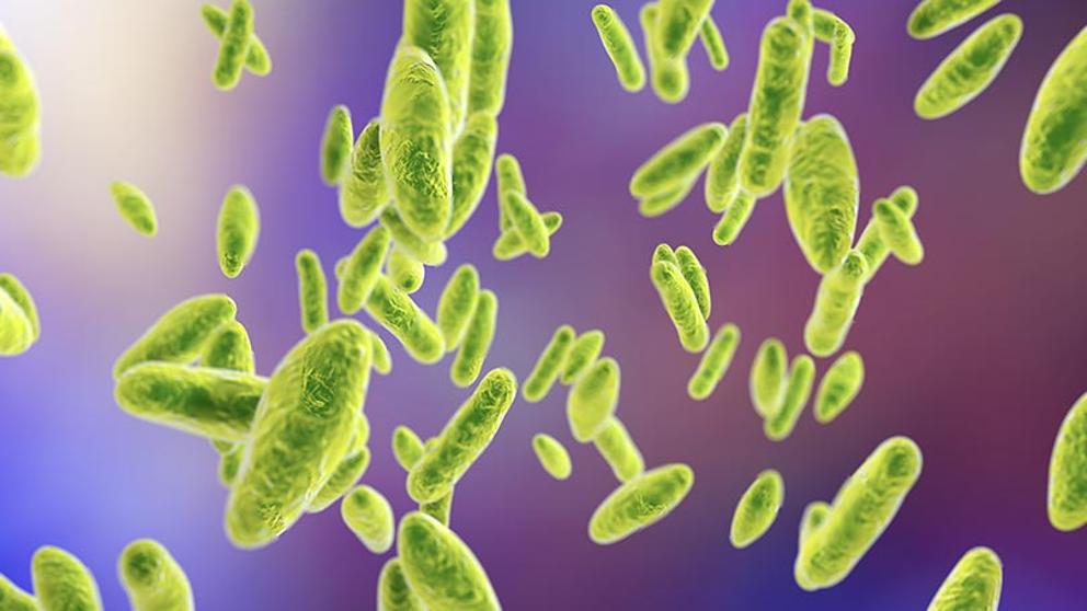 China: 10 mil contagiados con bacteria que «se fugó» de biofarmacéutica
