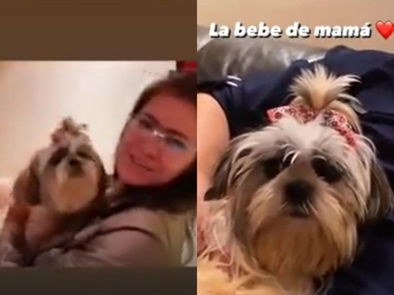 Alejandra Rubio será mamá