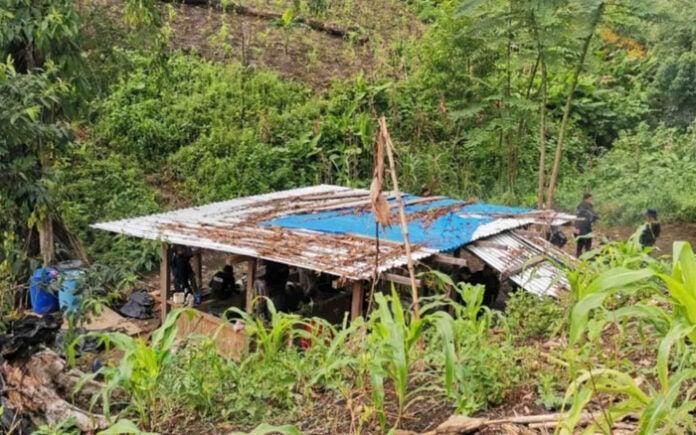 destruyen narcolaboratorio y plantas de coca