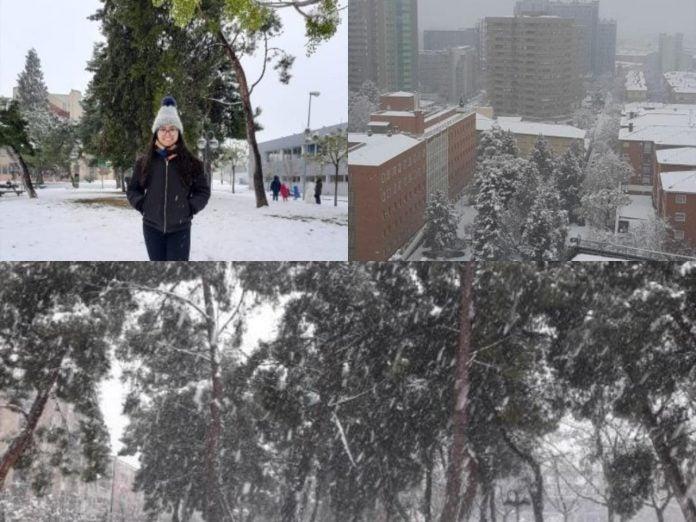 Hondureña España Nieve