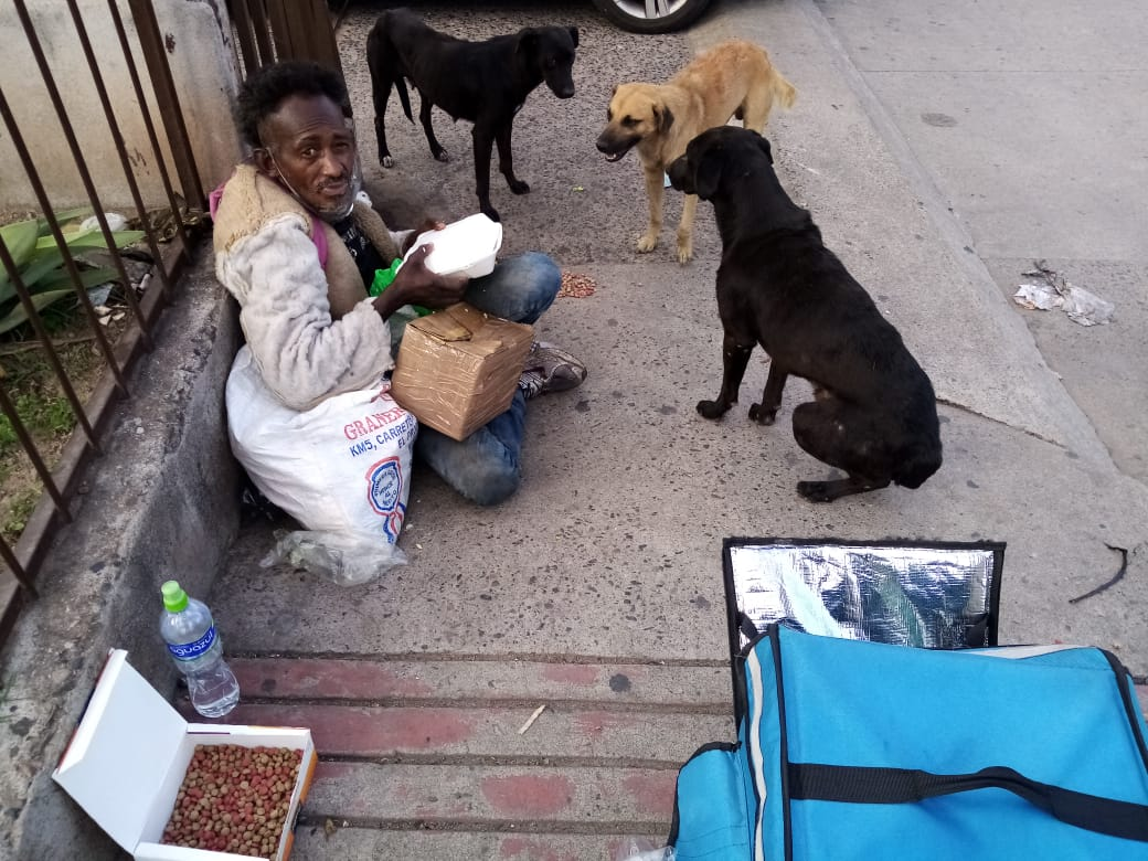 hondureño alimenta perritos de la calle