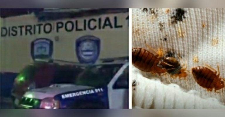 Supuestos policías denuncian plaga de chinches en postas de la capital