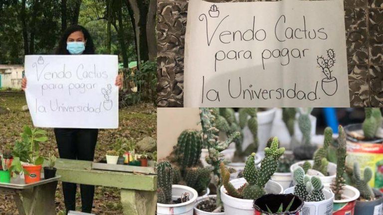 Mirian, tras perder su empleo, ahora paga la universidad vendiendo cactus