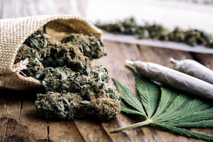 Científicos estudian posibles efectos de la marihuana contra el COVID-19