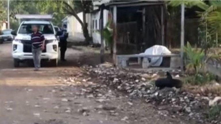 Misterio en El Progreso: celebró su cumpleaños, se sentó en una banca y murió