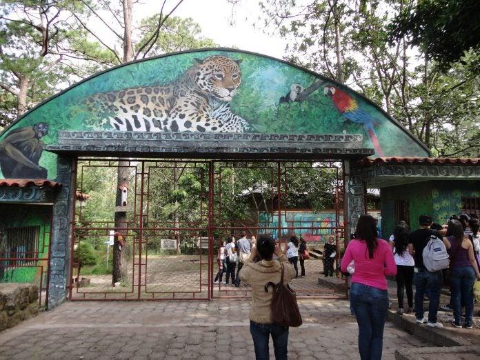 reabre Zoológico El Picacho