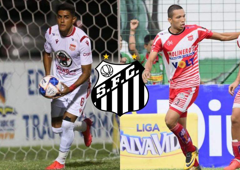 Santos de Brasil se interesa en Luis Palma y Carlos Meléndez del Vida
