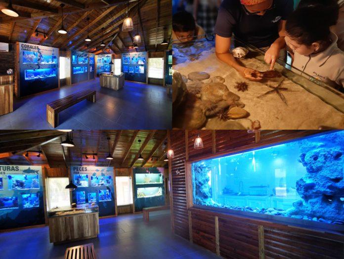 acuario marino más grande de Centroamérica en Tela