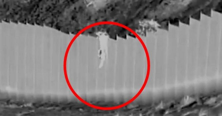 VIDEO| «Coyote» lanza a niñas de 3 y 5 años desde lo alto del muro fronterizo y huye