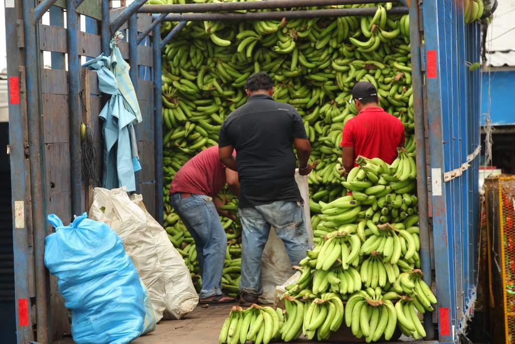 guineo verde aumento en su precio