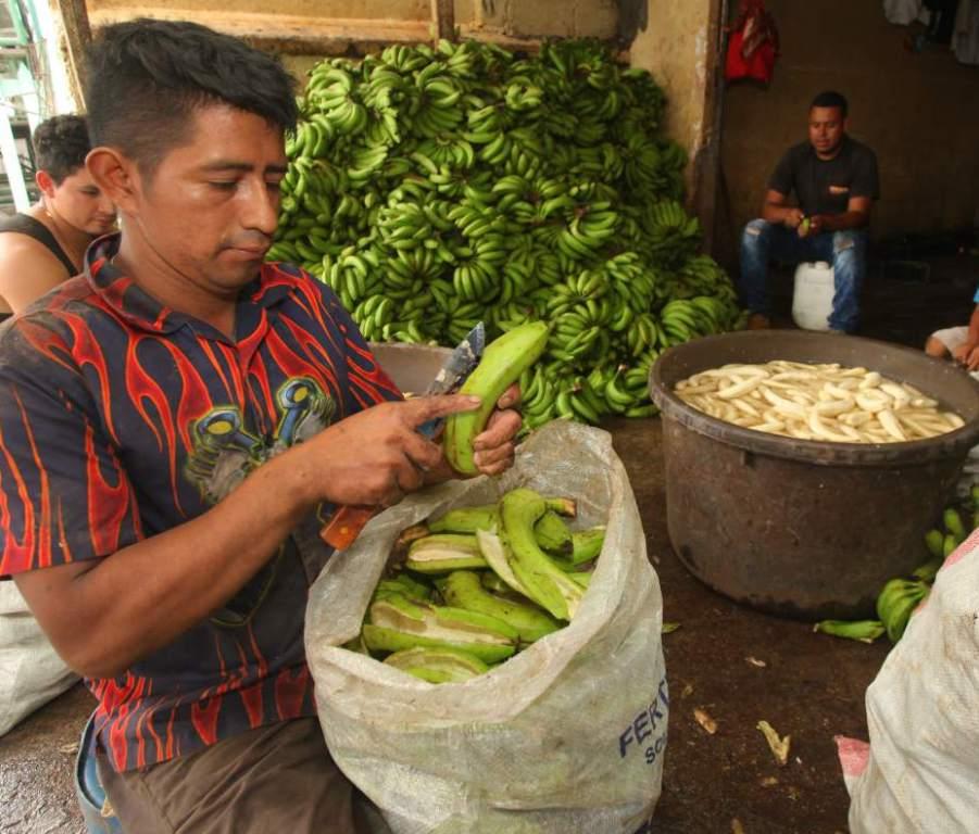 aumento y escasez precio guineo verde