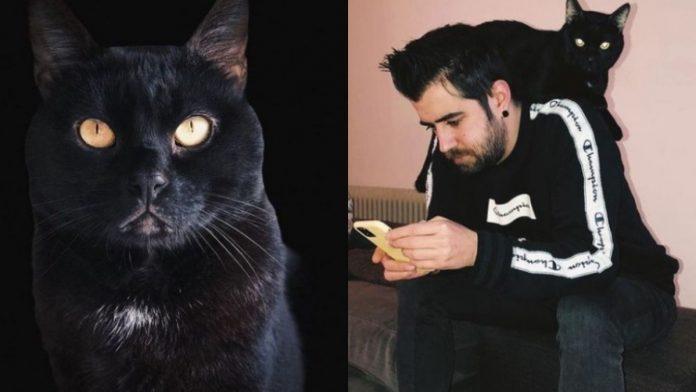 AuronPlay confirma muerte de de su gato