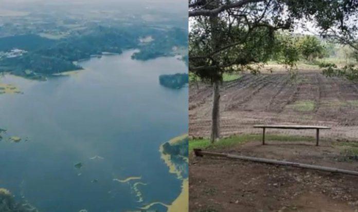 Laguna de Ticamaya se recupera