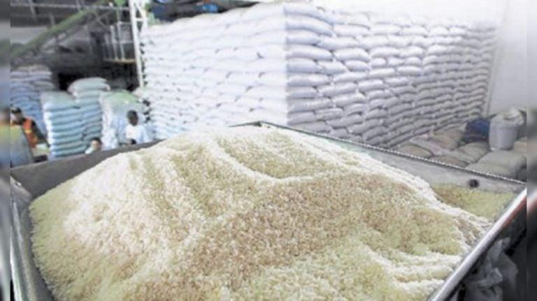 Producción cae un 34 %: imposiciones arancelarias y cero incentivos doblegan a los arroceros