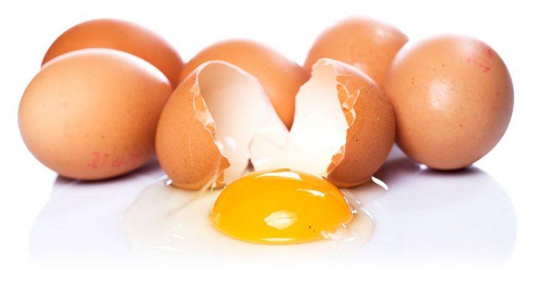 SALUD  ¿Cuáles son los mitos y verdades sobre el huevo?