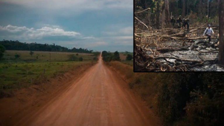«Daño ambiental» y «narcotráfico»: piden investigar carretera que se construye cerca del río Plátano