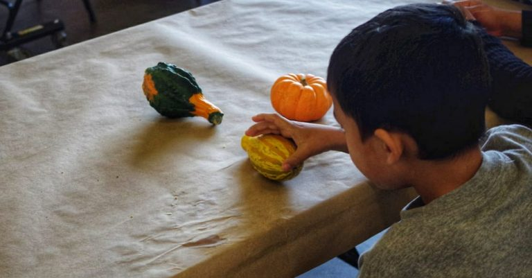 Luego de seis meses, hallan a niño hondureño que vivía solo en Estados Unidos
