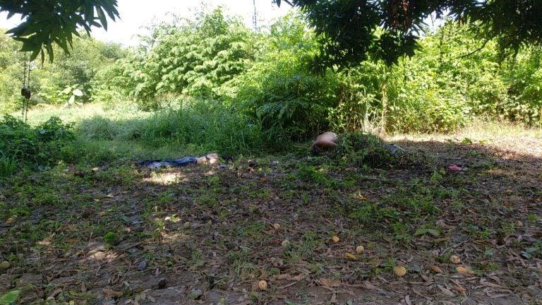 Semidesnudos y entre la maleza: hallan muerta a pareja en Chamelecón