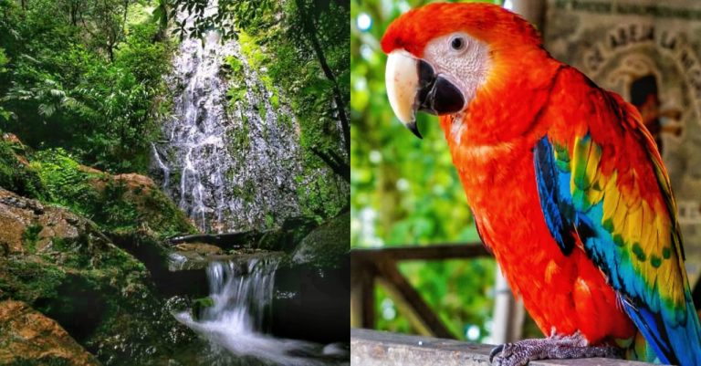 Concurso abierto: estas son las 30 Maravillas de Honduras más votadas