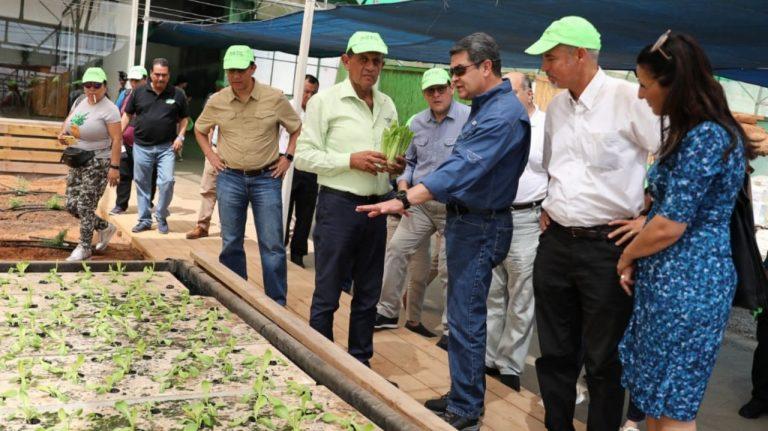Honduras firmará un acuerdo con Israel para impulsar la agricultura