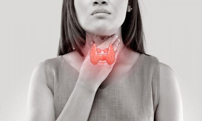 SALUD  Hipotiroidismo: conozca las señales de alerta y alimentos beneficiosos