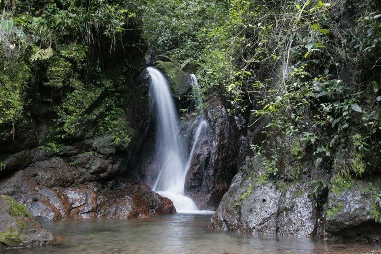 Para proteger el medio ambiente, redefinen límites de Panacam