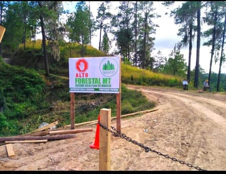 ¿Nueva ZEDE? Indígenas denuncian expropiación de tierras en Gualaco, Olancho