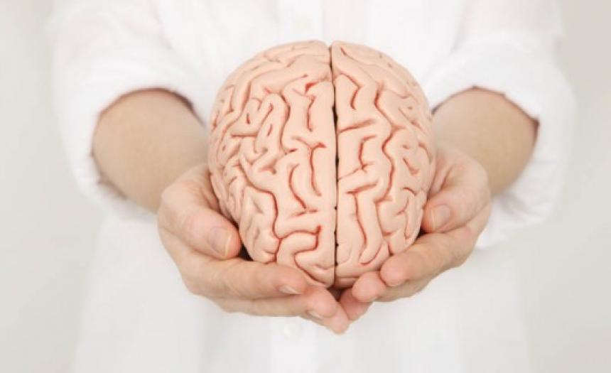 mitos sobre el cerebro