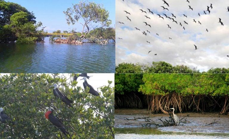 La Isla de Los Pájaros, un imperdible atractivo turístico en el sur de Honduras