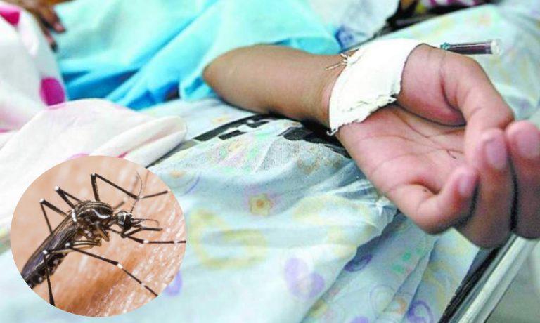 Cuatro niños están internos por dengue en el Hospital Escuela