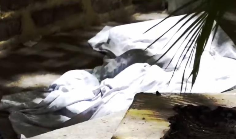 «¡Ya no puedo más!»: escena desgarradora deja crimen en barrio El Bosque