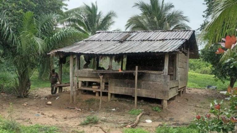 En biosfera del Río Plátano neutralizan supuesta estructura de tráfico de madera