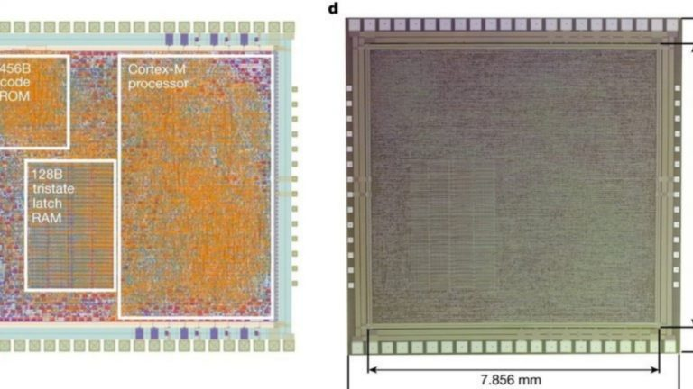 PlasticARM, un microchip que podría usarse en electrónicos flexibles