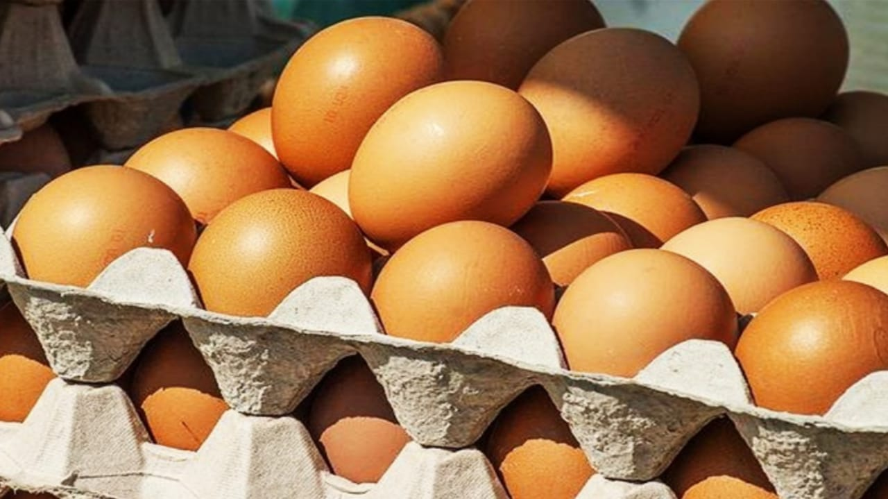 beneficios de comer dos huevos al día