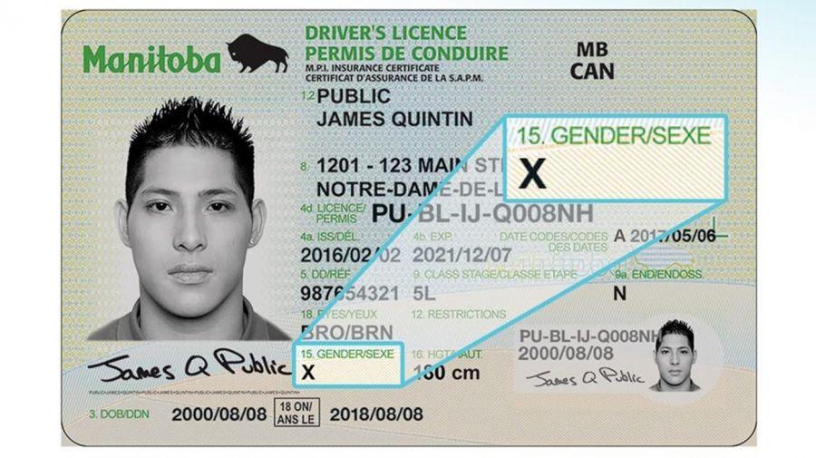 Argentina se suma a los países que permiten a las personas elegir su género en su documento, ya sea bajo la letra «M», «F» o «X», como Canadá, Australia y Nueva Zelanda.