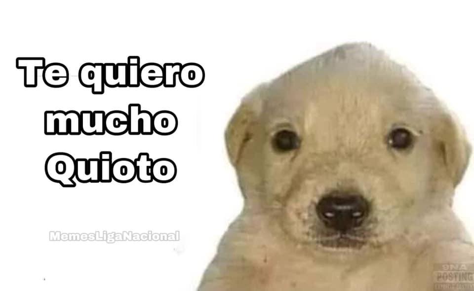 Memes Romell Quioto
