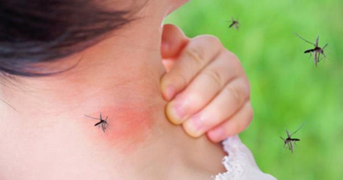 virus de mosquitos paralizan a humanos