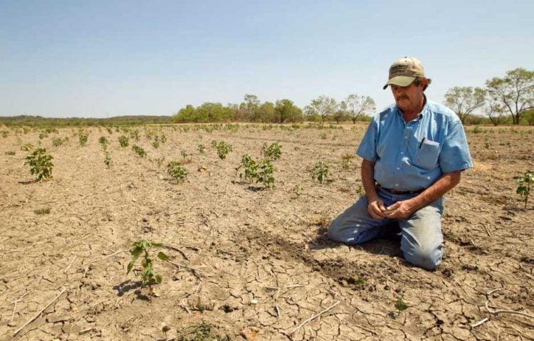 Por falta de lluvias, San Marcos de Colón se declara en emergencia