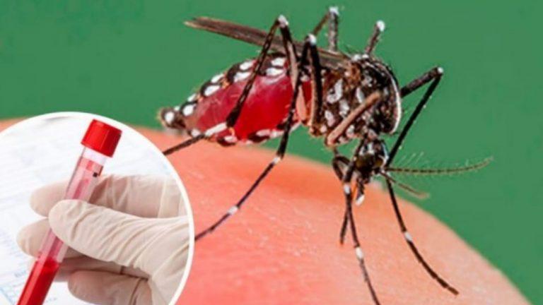 SESAL confirma dos muertes por dengue grave, las primeras de 2021