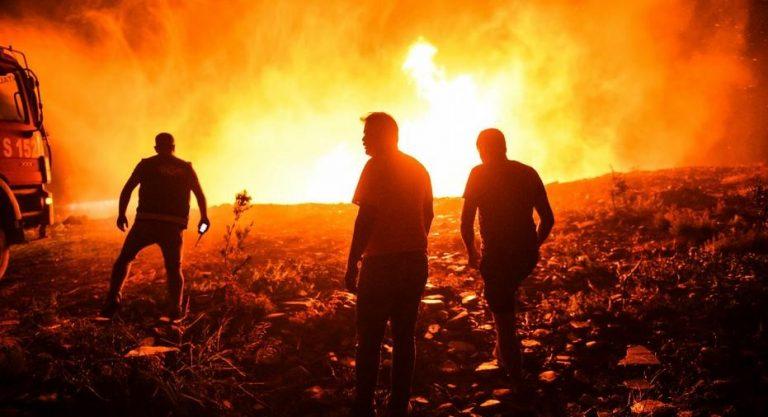 Ola de calor extremo aviva los incendios forestales en Europa