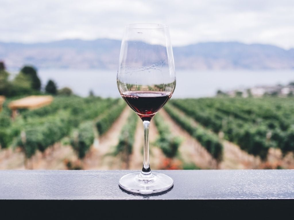 5 de las 10 mejores bodegas de vino se encuentran en Latinoamérica.