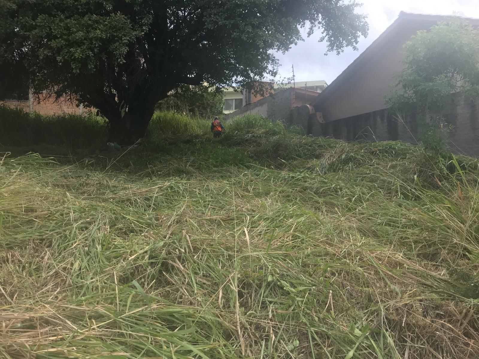 Autoridades determinaron que las personas dueñas de terrenos baldíos llenos de maleza serán multados.