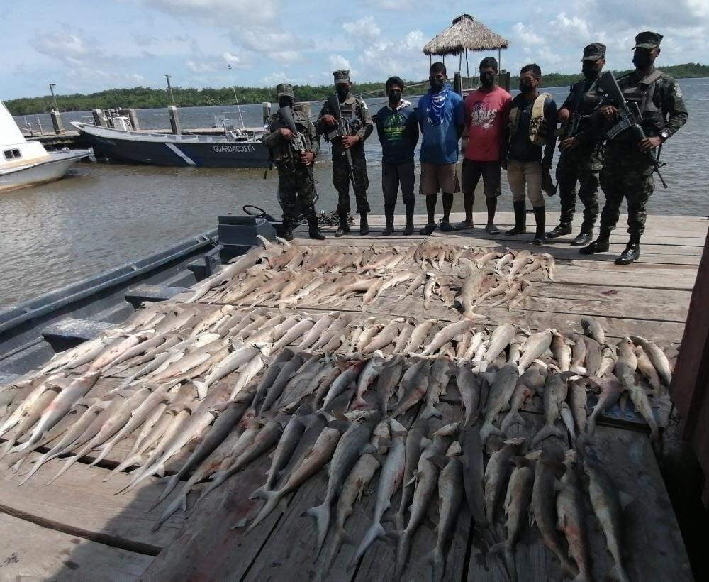 Los detenidos junto a los tiburones.