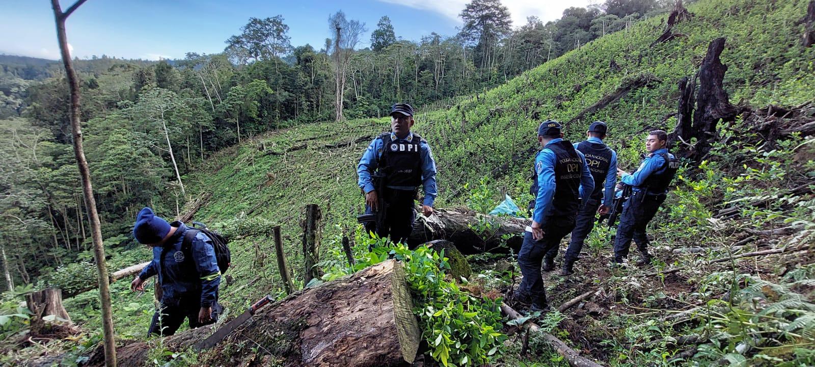 Dos fueron los detenidos en el lugar de la operación antidrogas.