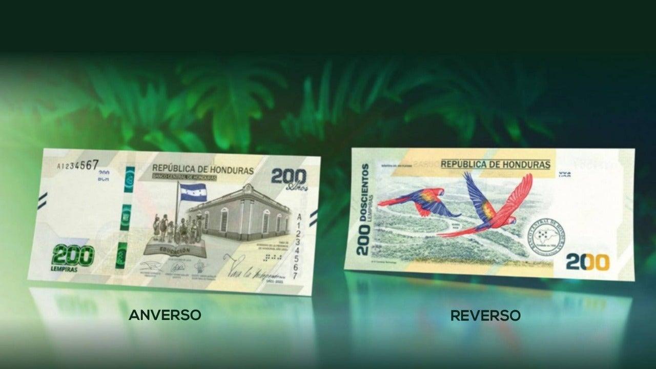 El diseño del nuevo billete representa la flora y la fauna de Honduras, así como la educación de nuestro país.