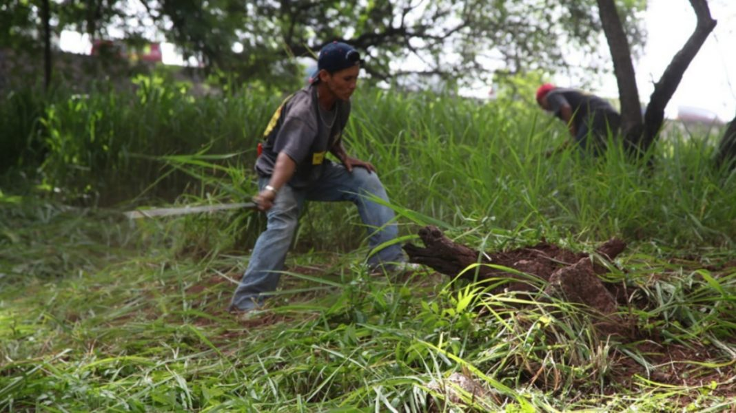 multas limpieza de terrenos dengue