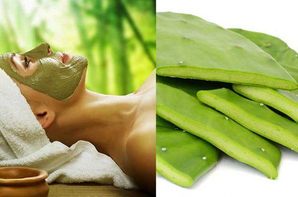 El nopal, un alimento que hace maravillas en la piel al aplicarlo