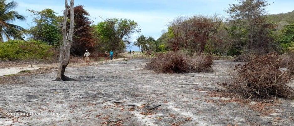 La quema de estas áreas protegidas es un delito ambiental que se paga con multas y hasta cárcel.