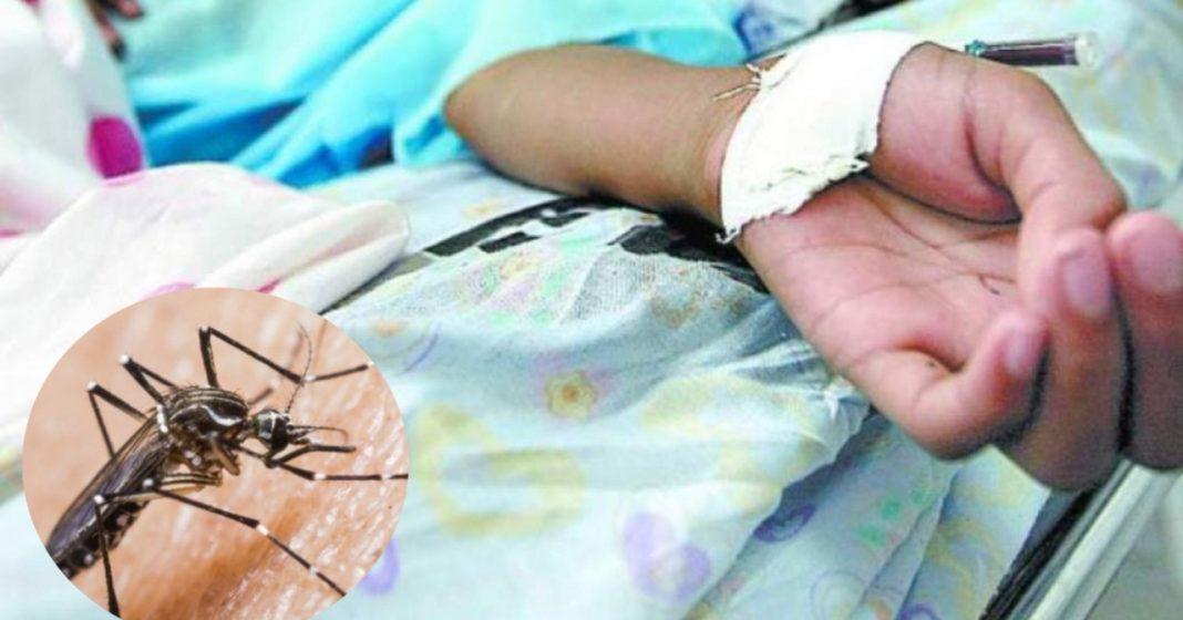 Niños con dengue en hospital escuela