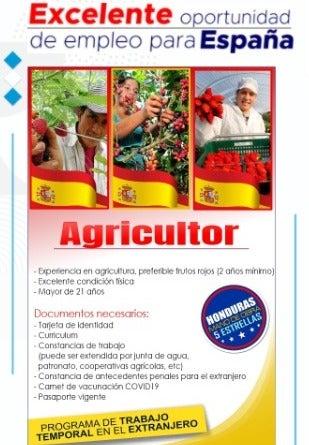 Requisitos que deben presentar los candidatos en el Programa de Trabajo Temporal en Extranjero, en España.